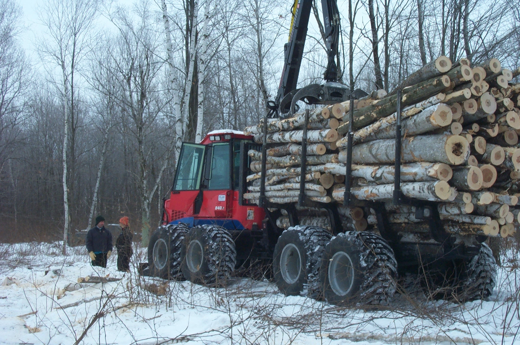 Logging Operation in the County Forest