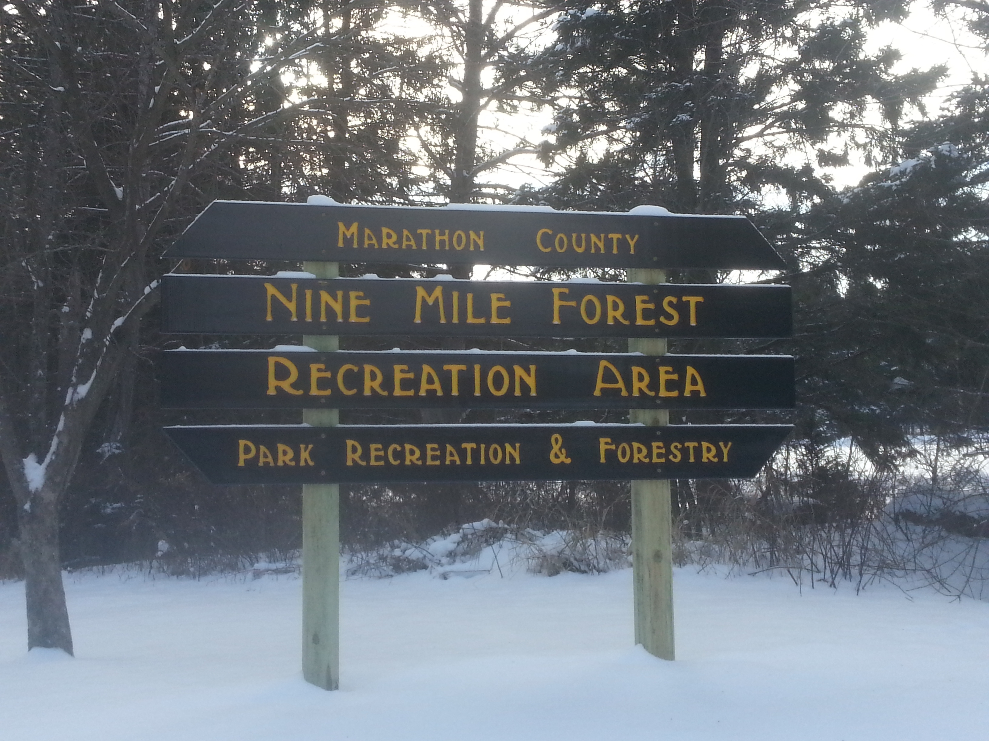 Nine Mile County Forest Recreation Area Entrance Sign